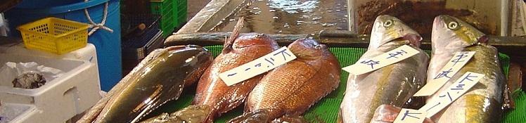 アルコールが原因の急性すい炎、お魚食べれば予防できる!?の画像
