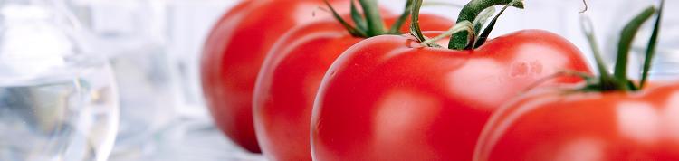 ゲノム編集とは何か?~農作物開発の現在と未来~【MYCODEセミナーレポート】の画像