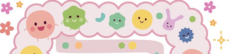 免疫力UPで花粉症に効く!?「腸内環境を整える」ってどういうこと?の画像