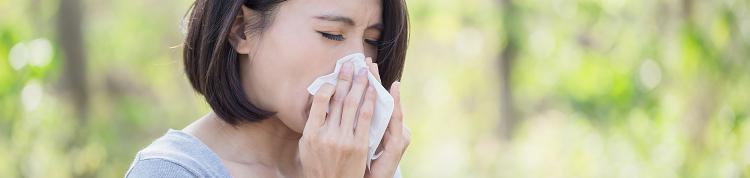 花粉症は日本だけ?なぜかかる?春の花粉症講座の画像