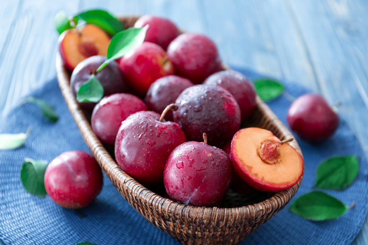 Plums cognitive function article main