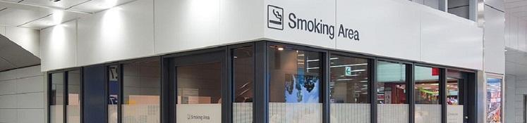 胎児のときの受動喫煙がアレルギー疾患の発症リスクを高める  -16年間にわたる追跡調査が明らかに-の画像