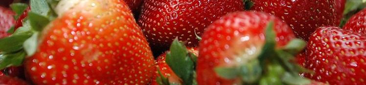 イチゴ大好きな人にグッドニュース!あの病気を予防する!?の画像