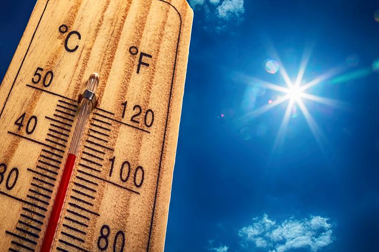 管理栄養士が暑い夏を乗り切るためのおすすめの食事をご紹介します(写真:Shutterstock.com)